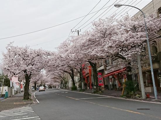 2017-0416-05.jpg