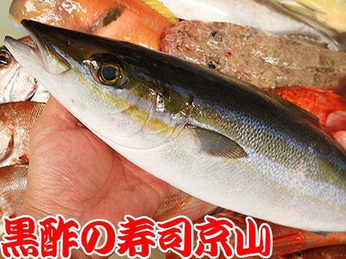 寿司の種類 宅配寿司 ツムブリ