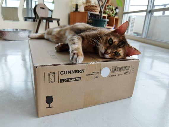 IKEA イケア 洗面 Gunnern ミラーキャビネット DIY