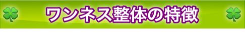 ワンネス整体の特徴 icon 2014.11.20