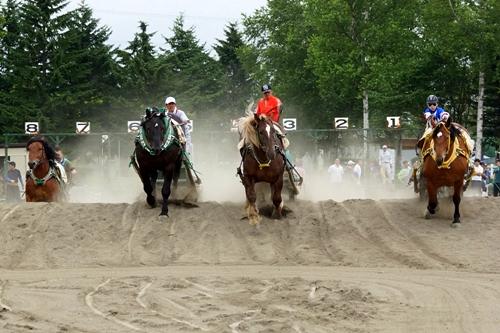 鹿追町競ばん馬競技大会