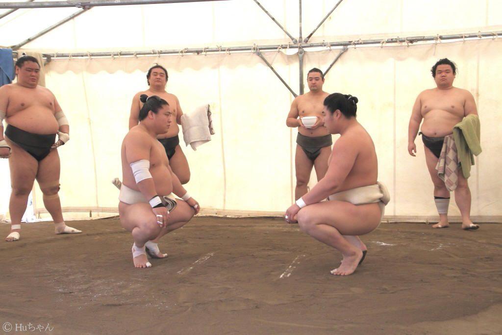 その他 ]   Huちゃん 写真日記 - 楽天ブログ