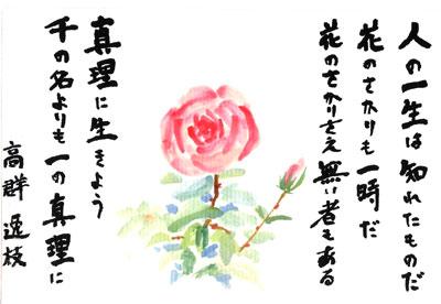 絵手紙201305バラ