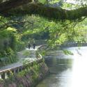 水前寺江津湖公園.jpg1.jpg