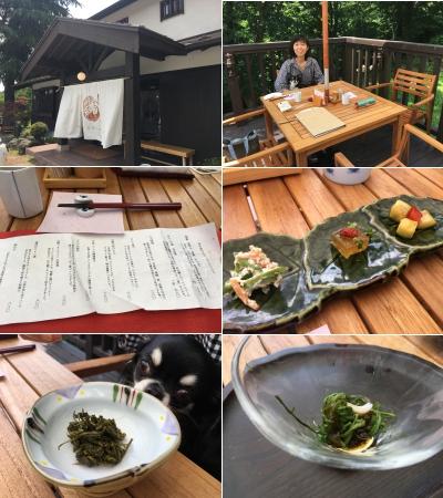 蕎麦茶寮 七草