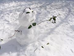 ブログ雪だるま.jpg