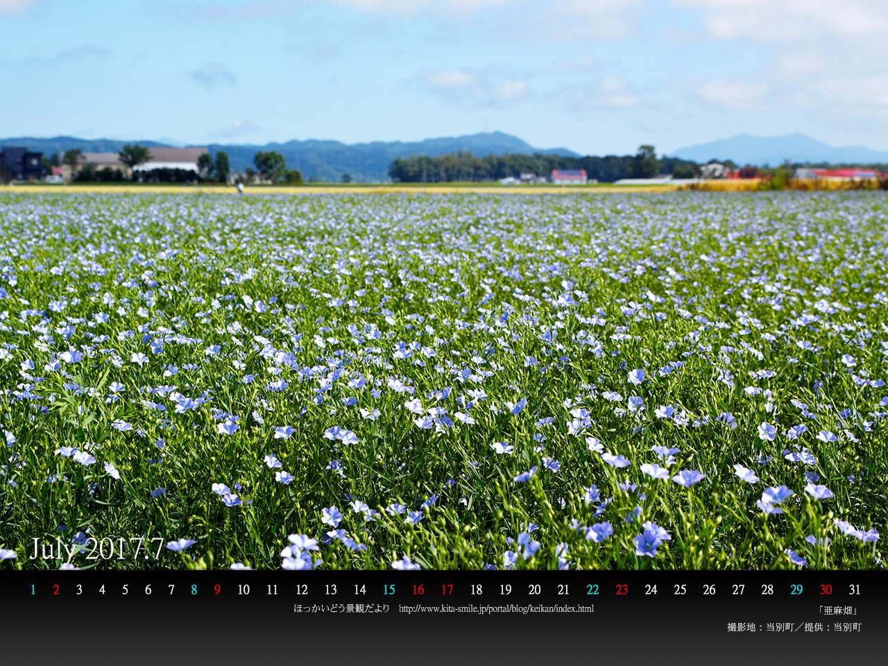 7月は当別町の亜麻畑 Pc壁紙カレンダーを配布しています 北海道庁のブログ 超 旬ほっかいどう 楽天ブログ