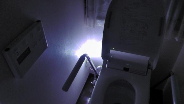 2階トイレに常夜灯 ナイトライト NL30WH ホワイト