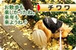 ityou banner.JPG