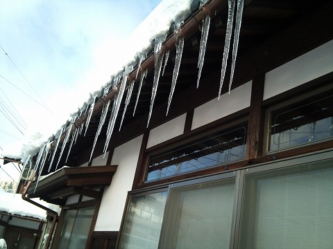 2012.02.02 今冬の雪の中・・・ 004.jpg