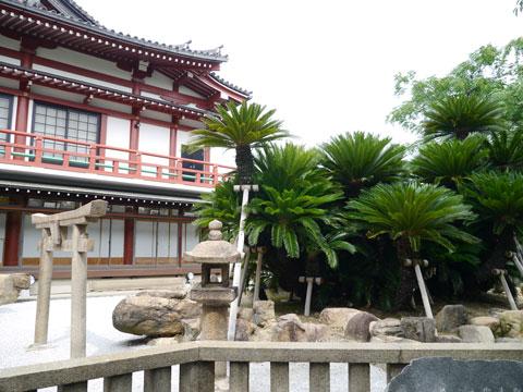 妙国寺亀岩
