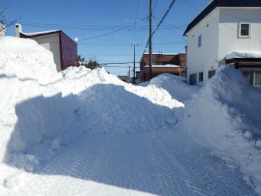雪寄せ.jpg