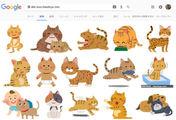 猫の画像を検索