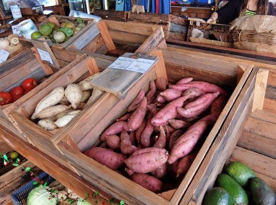 Red Barn Farmstand レッド・バーン・ファームスタンド ハワイ ノース Hawaii 新 ひまわり サンタ