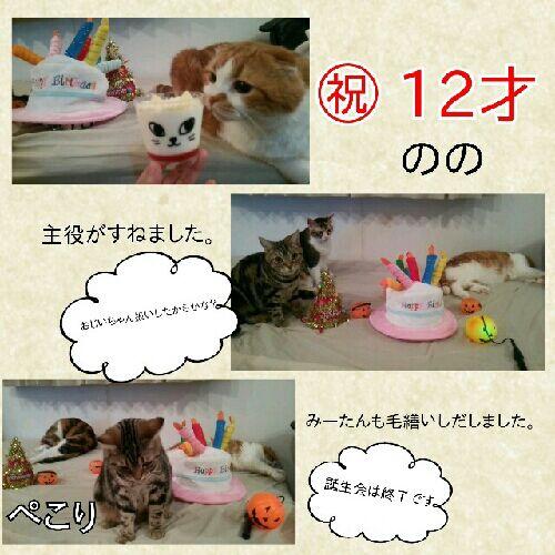 rblog-20161005224325-01.jpg