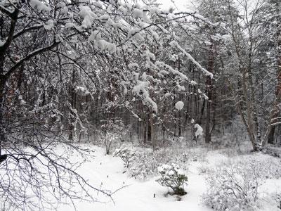 雪見展望風呂