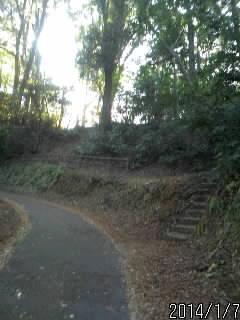 2の丸へ上がる石段1