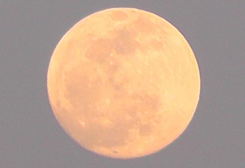 夕日に照らされた月