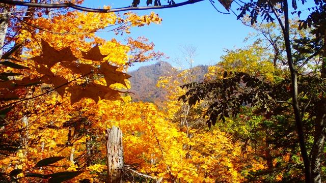 PA181292 11:22神威岳.jpg