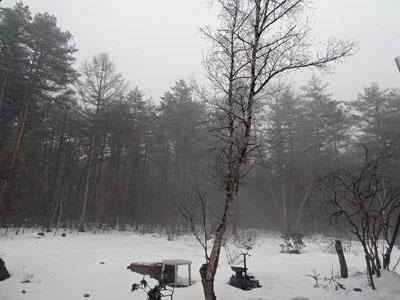 2月20日湿雪^^