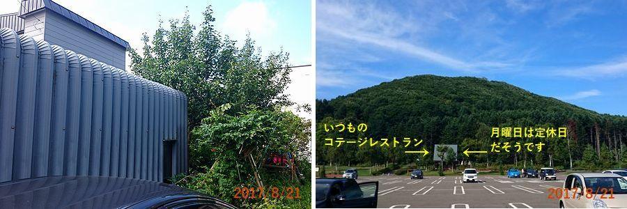 8/21岩見沢公園にドライブ.jpg