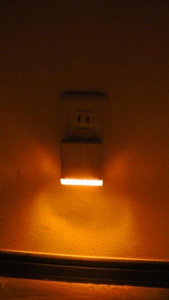 LED保安灯のみの場合