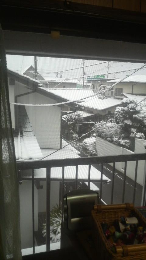 近所の雪.jpg