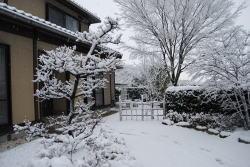 雪庭.jpg