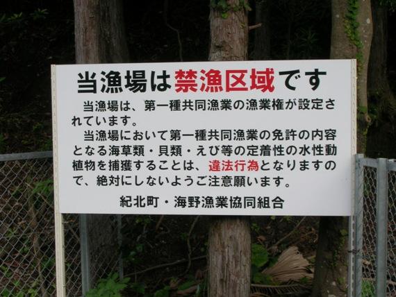 2005_0101_000000-DSCN0462.JPG