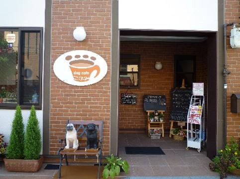 ドッグラン&ドッグカフェ 022.jpg