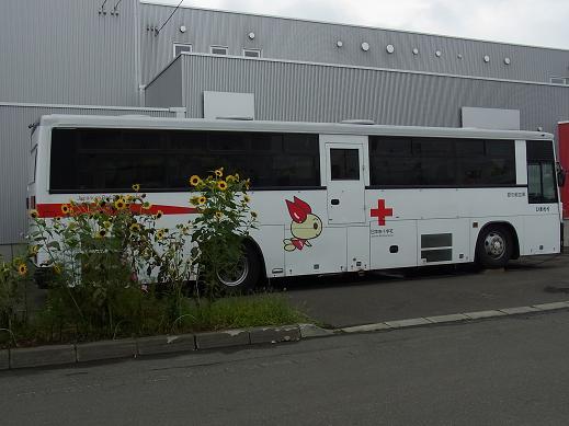 RIMG0944.JPG