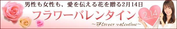 valentine_ban.jpg