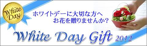 whiteday_ban.jpg