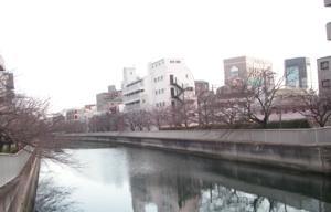 th_PICT0027.jpg