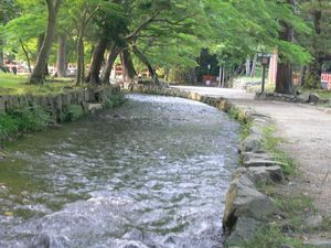 禊の川.jpg