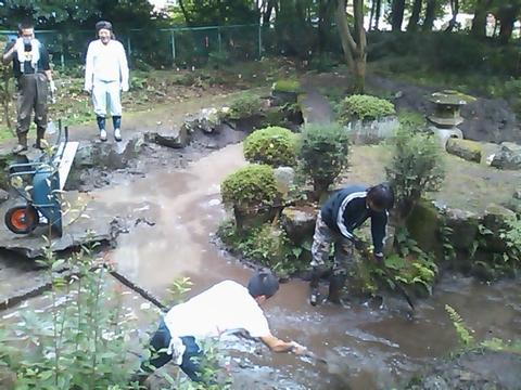 20101102カクサ池整備1.jpg