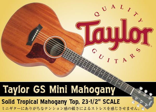 Taylor GS Mini Mahogany-BLOG