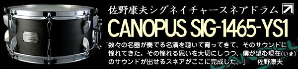 canopus_sig_1465ys1-BLOG