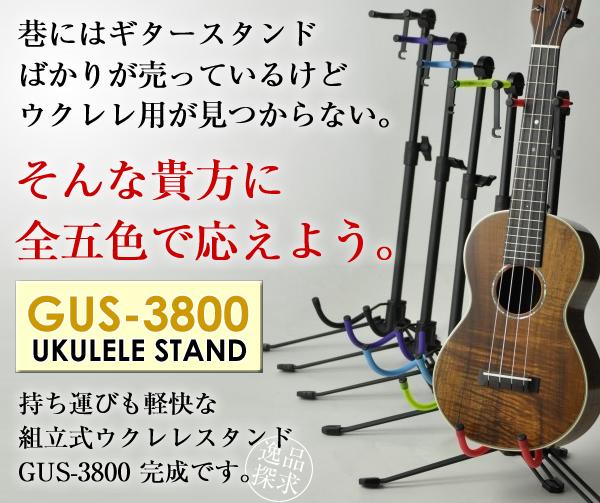 GUS-3800-BLOG