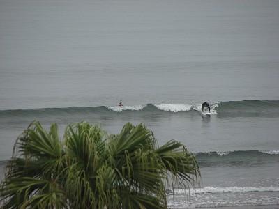 日南海岸サーフィン8628