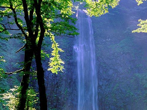 逆光の玉簾の滝