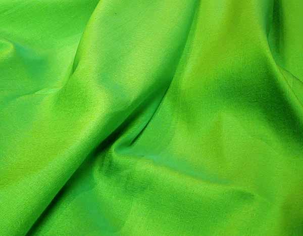 グリーン系玉虫