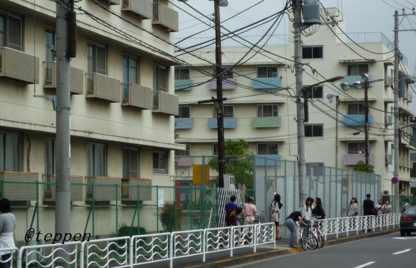山 女 日記 ロケ 地