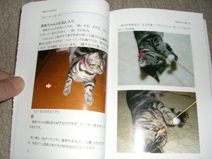 本4.jpg