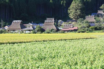京都美山.jpg