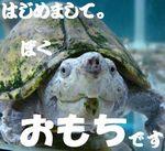 コピー ~ 0199.jpg