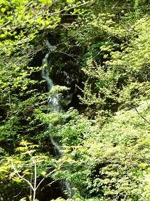 麻耶の滝もどき