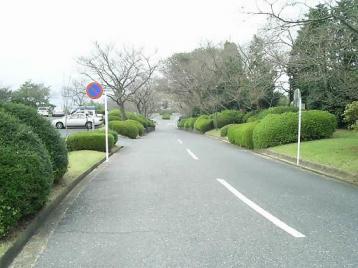 50 ○○への坂道.JPG