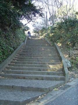 50 通学路急階段下から.JPG