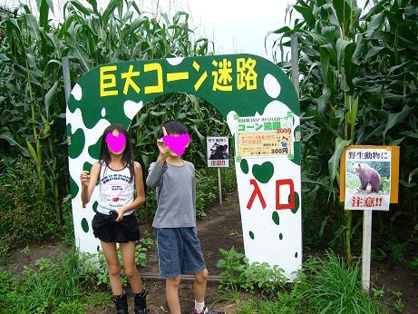 箱根牧場 とうきび迷路.JPG